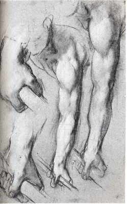 Gemini Rules the Arms-Di Vinci Drawing
