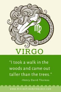 The Sign of Virgo in Vedic Astrology