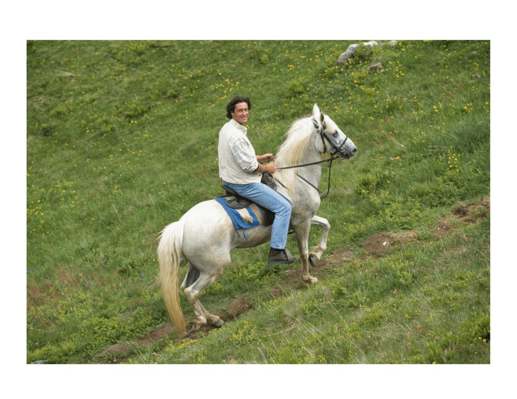 Sagittarius Sign & A Man on a Horse